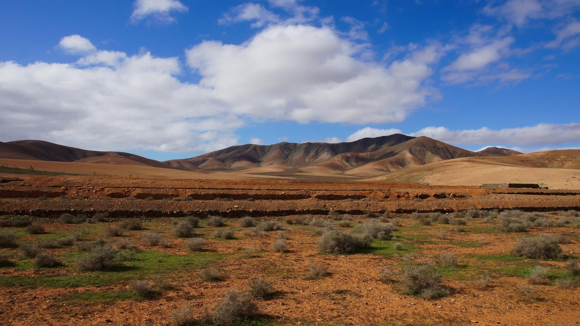 Rural Park Betancuria Fuerteventura